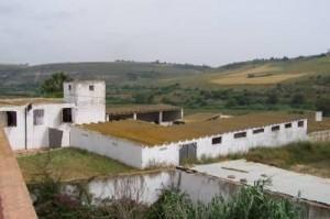secteur agricol