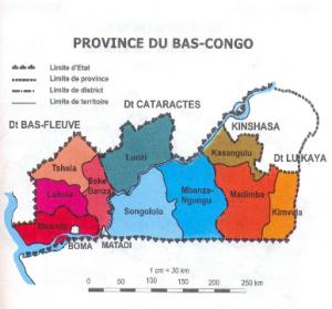Contribution--l-analyse-de-la-chane-de-valeurs-des-produits-agroforestiers--cas-de-dacryodes-ed3