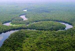 basin fleuve congo